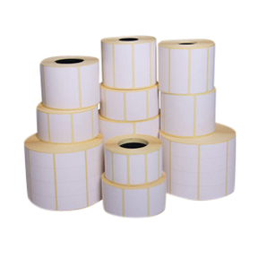 T0P400600P1P38F 4 x 6 White