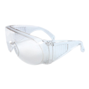 RAD64051101 Visitor Safety Glasses w/Clear Frame and